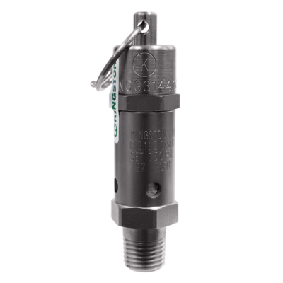 112CSSEN ASME Code Safety Valve, Electroless Nickel Plated