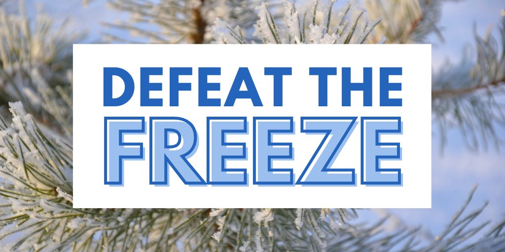 Kingston Defeat the Freeze